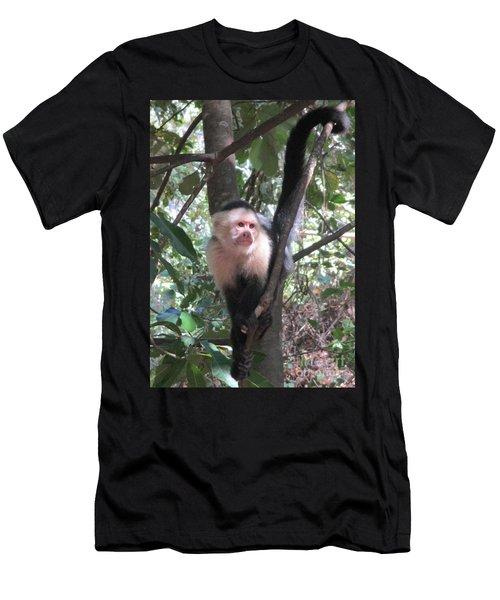 Capuchin Monkey 4 Men's T-Shirt (Slim Fit) by Randall Weidner