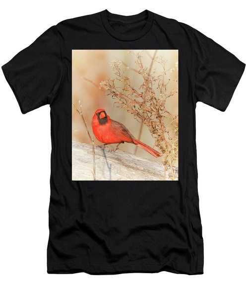 Cardinal In Fall  Men's T-Shirt (Athletic Fit)
