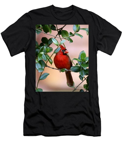 Cardinal In The Jasmine Men's T-Shirt (Slim Fit) by Myrna Bradshaw