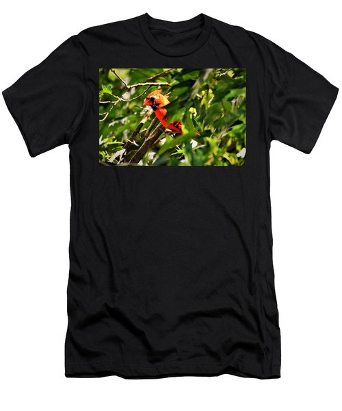 Cardinal In Tree Men's T-Shirt (Athletic Fit)