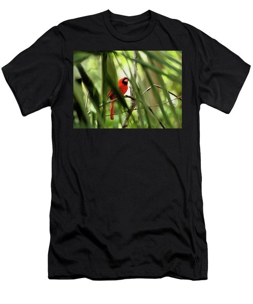 Cardinal Spy Men's T-Shirt (Athletic Fit)