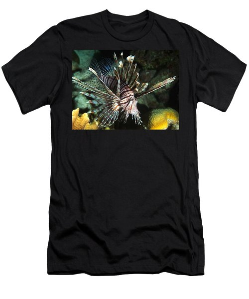 Caribbean Lion Fish Men's T-Shirt (Athletic Fit)