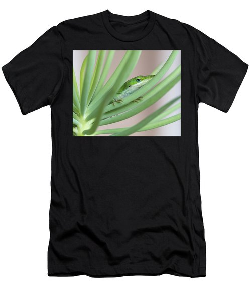 Carolina Anole Men's T-Shirt (Athletic Fit)