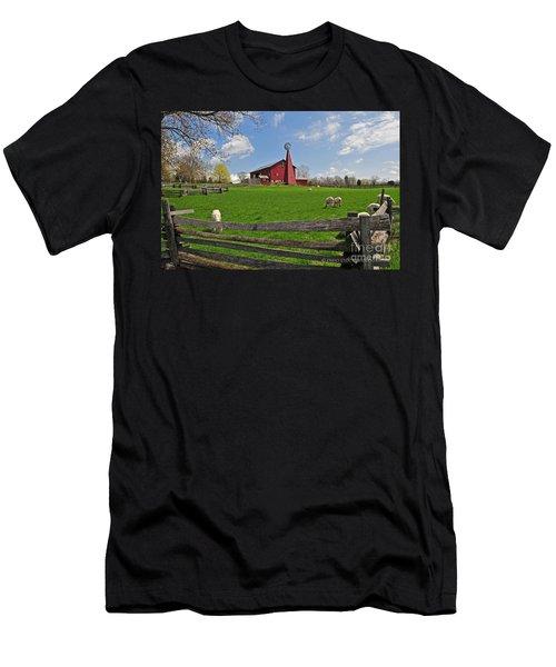 D14d-43 Carriage Hill Farm Metro Park Photo Men's T-Shirt (Athletic Fit)