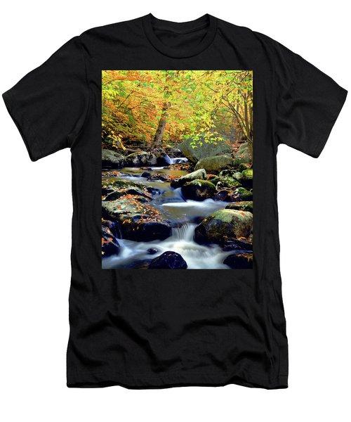 Cascade Brook Men's T-Shirt (Athletic Fit)