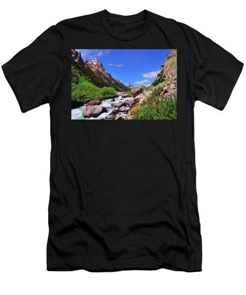 Cascade Canyon Men's T-Shirt (Athletic Fit)