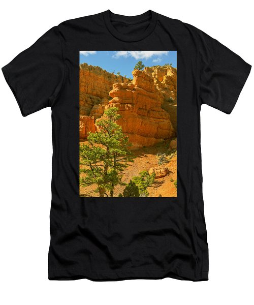 Casto Canyon Men's T-Shirt (Athletic Fit)