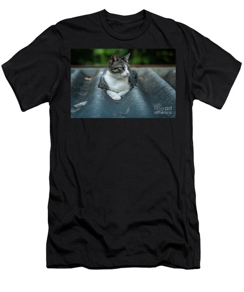 Cat In The Cradle Men's T-Shirt (Athletic Fit)