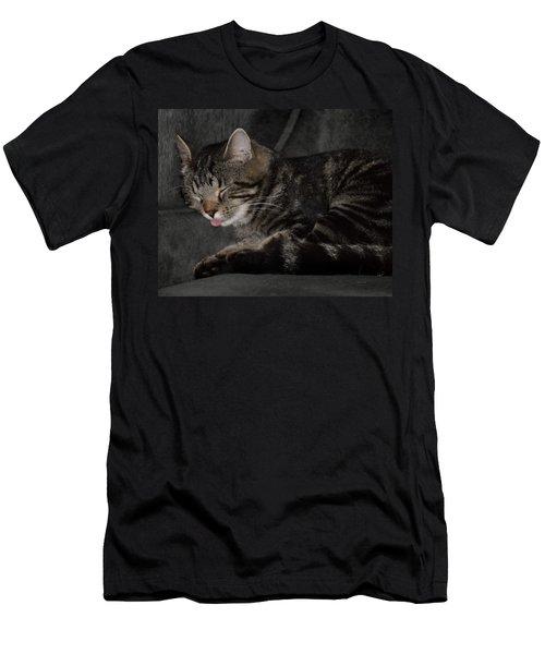 Cat Nap Men's T-Shirt (Athletic Fit)