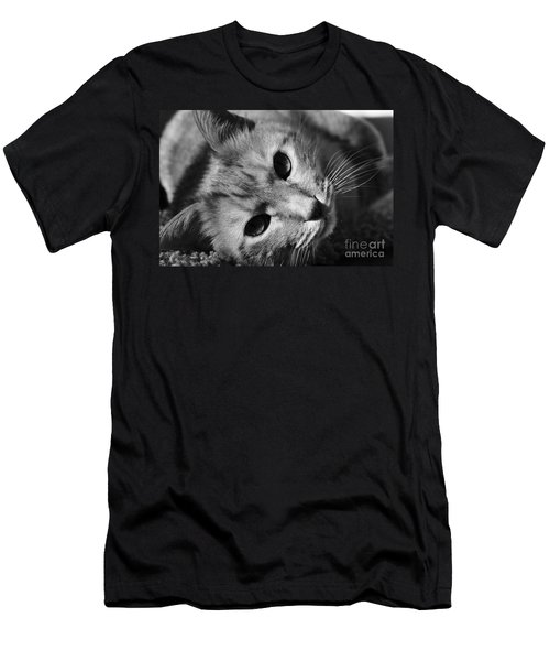 Cat Naps Men's T-Shirt (Athletic Fit)