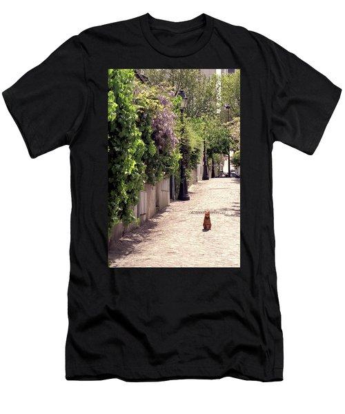 Cat On Cobblestone Men's T-Shirt (Athletic Fit)