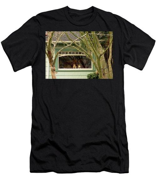 Cat Pals Waiting Men's T-Shirt (Athletic Fit)