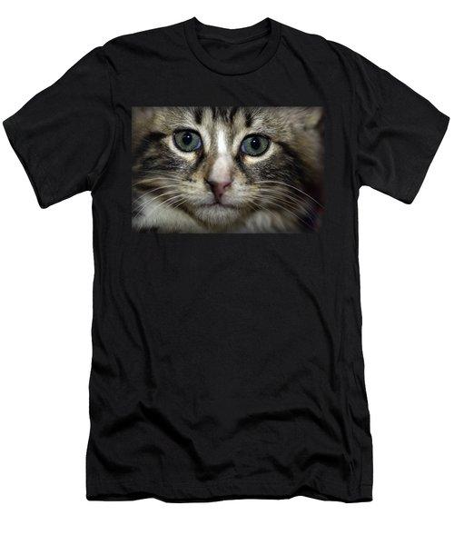 Cat T-shirt 1 Men's T-Shirt (Athletic Fit)