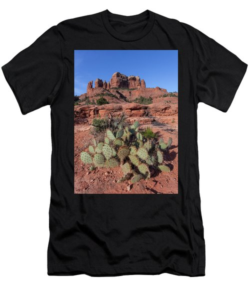 Cathedral Rock Cactus Grove Men's T-Shirt (Athletic Fit)