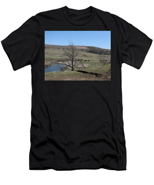 Cattle Along Deep Creek Men's T-Shirt (Athletic Fit)