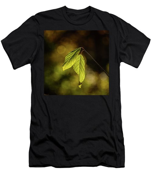 Caught In The Light Men's T-Shirt (Athletic Fit)