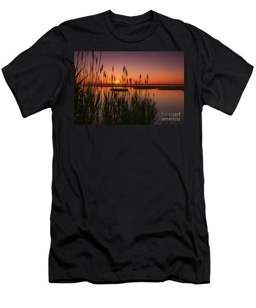 Cedar Beach Sunset In The Reeds Men's T-Shirt (Athletic Fit)