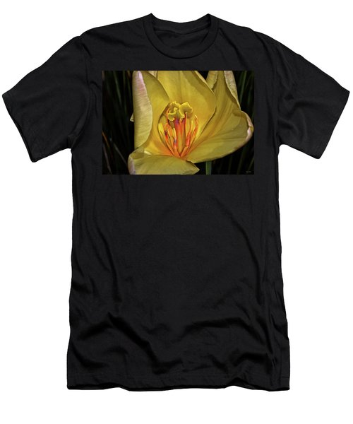 Centerpiece - Grand Opening Yellow Tulip 001 Men's T-Shirt (Slim Fit) by George Bostian