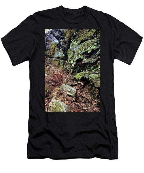 Central Park Rock Formation Men's T-Shirt (Athletic Fit)