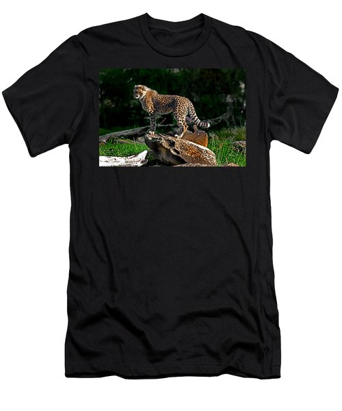 Cheetah Cub Finds Her Pride Rock Men's T-Shirt (Athletic Fit)