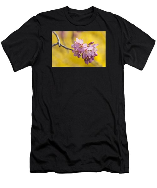 Cherry Blossoms Against Yellow Men's T-Shirt (Athletic Fit)