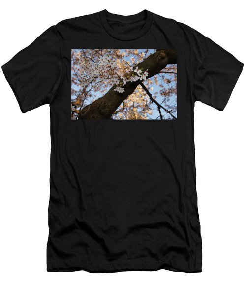 Cherry Blossoms Men's T-Shirt (Slim Fit) by Megan Cohen