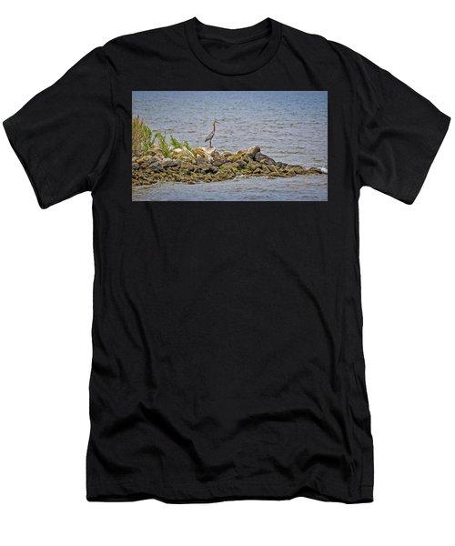 Chesapeake Bay Great Blue Heron Men's T-Shirt (Athletic Fit)