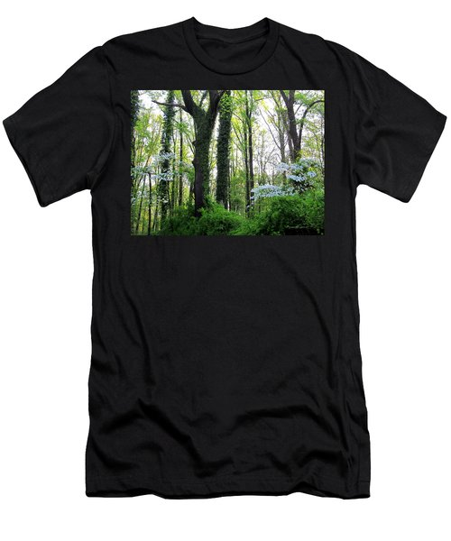 Chesapeake Oldgrowth Forest Men's T-Shirt (Athletic Fit)