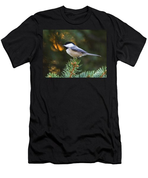Chickadee In Spruce  Men's T-Shirt (Athletic Fit)
