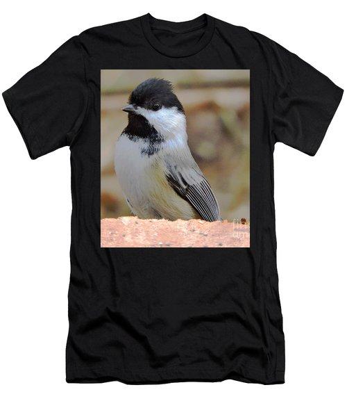 Chickadee's Winter Reverie Men's T-Shirt (Athletic Fit)