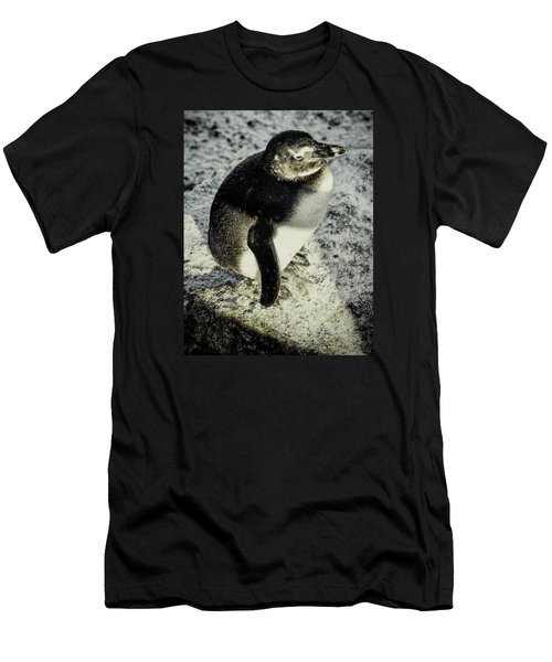 Chillypenguin Men's T-Shirt (Slim Fit) by Chris Boulton