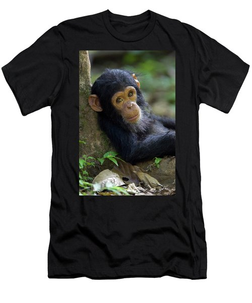 Men's T-Shirt (Athletic Fit) featuring the photograph Chimpanzee Pan Troglodytes Baby Leaning by Ingo Arndt