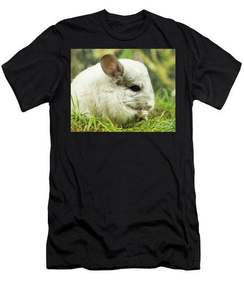 Chinchilla Men's T-Shirt (Athletic Fit)