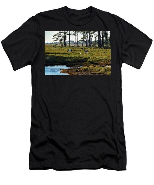Chincoteague Ponies Men's T-Shirt (Athletic Fit)