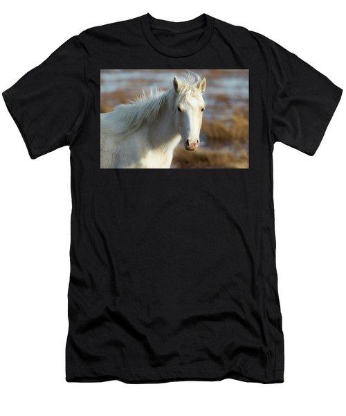 Chincoteague White Pony Men's T-Shirt (Athletic Fit)