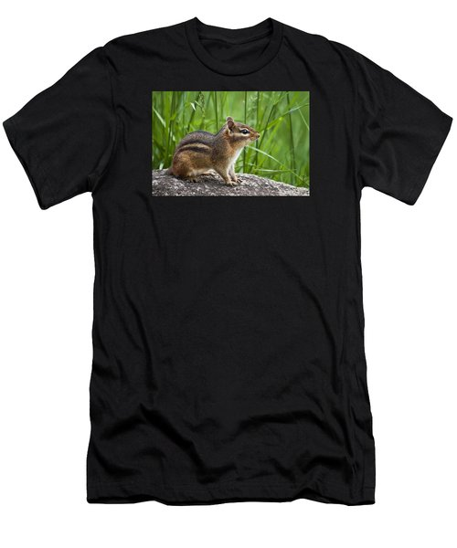 Chipmunk Men's T-Shirt (Athletic Fit)