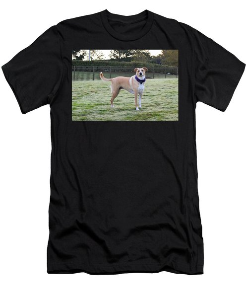 Chloe At The Dog Park Men's T-Shirt (Athletic Fit)