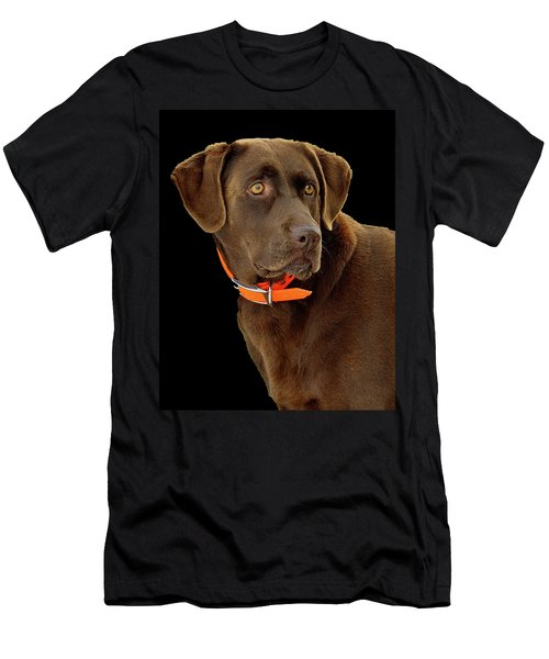 Chocolate Lab Men's T-Shirt (Athletic Fit)