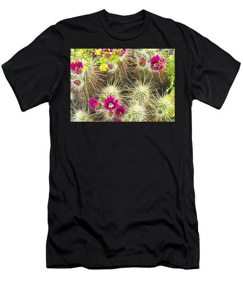 Cholla Cactus Blooms Men's T-Shirt (Athletic Fit)