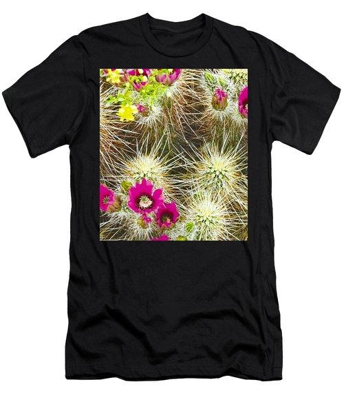 Cholla Cactus Blooms Men's T-Shirt (Athletic Fit)