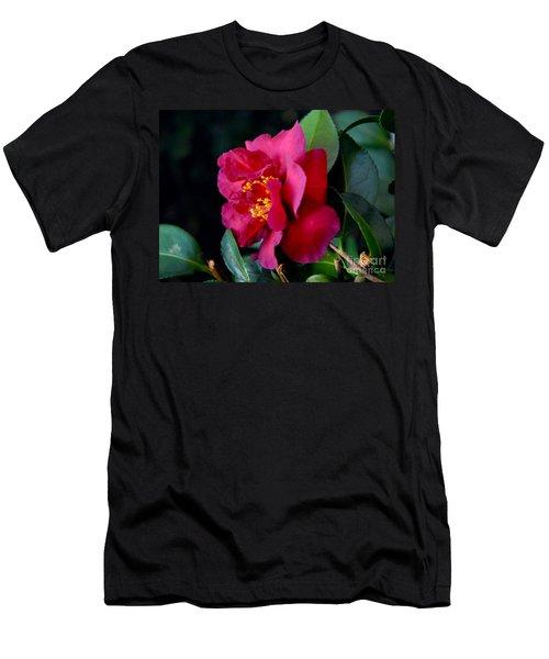 Christmas Camellia Men's T-Shirt (Athletic Fit)