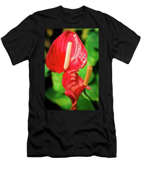 City Garden Flowers Men's T-Shirt (Athletic Fit)