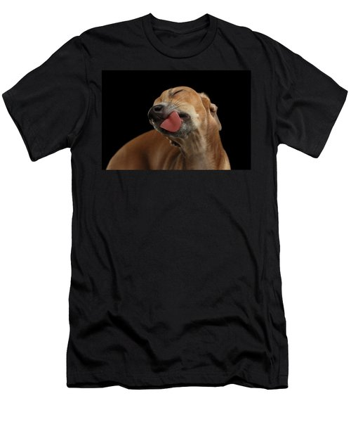 Closeup Cute Italian Greyhound Dog Licked With Pleasure Isolated Black Men's T-Shirt (Slim Fit) by Sergey Taran
