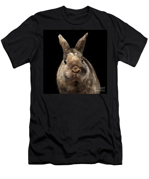 Closeup Funny Little Rabbit, Brown Fur, Isolated On Black Backgr Men's T-Shirt (Athletic Fit)