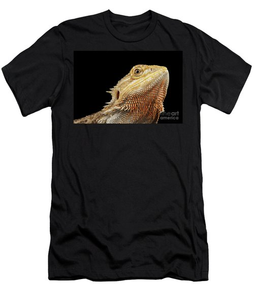Closeup Head Of Bearded Dragon Llizard, Agama, Isolated Black Background Men's T-Shirt (Athletic Fit)