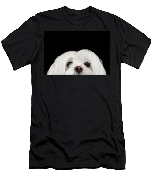 Men's T-Shirt (Athletic Fit) featuring the photograph Closeup Nosey White Maltese Dog Looking In Camera Isolated On Black Background by Sergey Taran