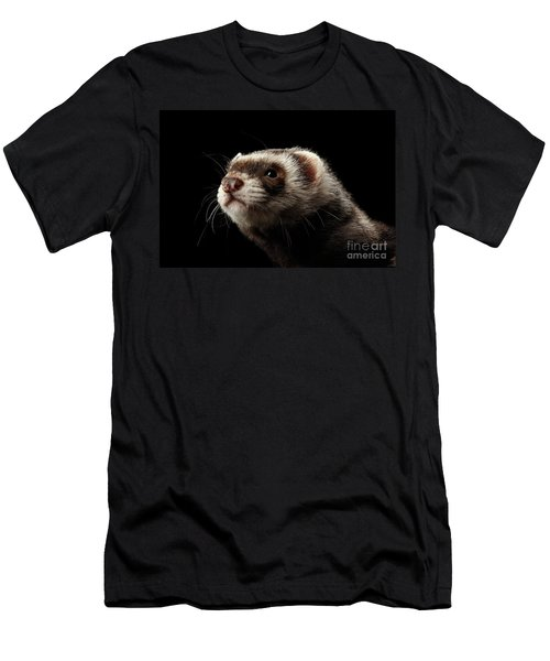 Men's T-Shirt (Athletic Fit) featuring the photograph Closeup Portrait Of Funny Ferret Looking At The Camera Isolated On Black Background, Front View by Sergey Taran
