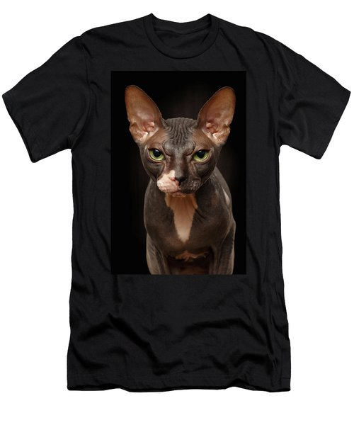 Closeup Portrait Of Grumpy Sphynx Cat Front View On Black  Men's T-Shirt (Athletic Fit)