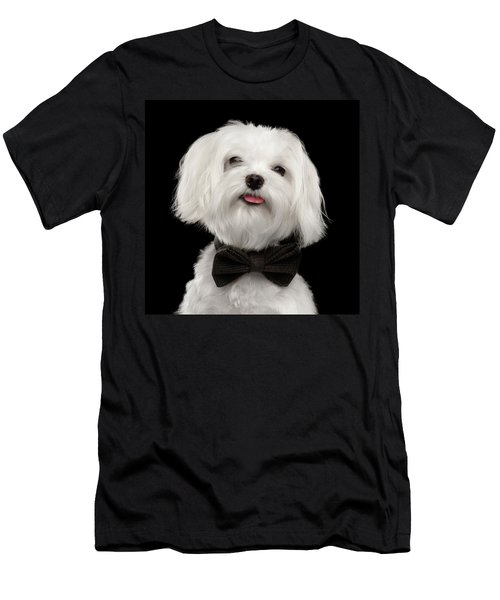 Closeup Portrait Of Happy White Maltese Dog With Bow Looking In Camera Isolated On Black Background Men's T-Shirt (Athletic Fit)