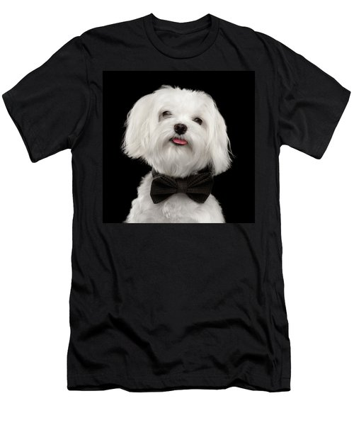 Men's T-Shirt (Athletic Fit) featuring the photograph Closeup Portrait Of Happy White Maltese Dog With Bow Looking In Camera Isolated On Black Background by Sergey Taran